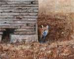 Red Fox Corn Crib